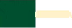 Logo společnosti Toro game s.r.o.
